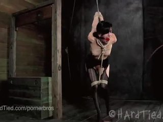 Elise graves est ravaged en rope bondage
