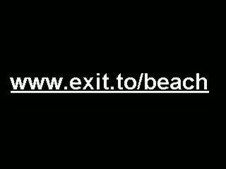 Groot publiek nudist swinger strand party